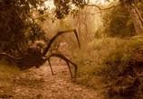 Сцена из фильма Путешествие в страну Динозавров / Journey to the Center of the Earth (2008)