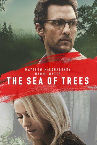 море деревьев фото