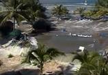 Сцена из фильма National Geographic. Следующее мегацунами / The Next Mega Tsunami (2014) National Geographic. Следующее мегацунами сцена 4