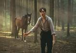 Сцена из фильма Угоняя лошадей / Ut og stjæle hester (2019)