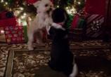 Сцена из фильма В канун Рождества / One Christmas Eve (2014) В канун Рождества сцена 18