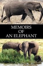 Воспоминания слона