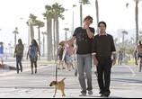 Сцена из фильма Люблю тебя, чувак / I Love You, Man (2009) Люблю тебя, чувак