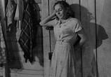 Сцена из фильма Пинки / Pinky (1949) Пинки сцена 4