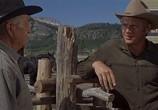Сцена из фильма Невада Смит / Nevada Smith (1966) Невада Смит сцена 19