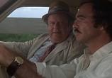 Фильм Аллигатор / Gator (1976) - cцена 2