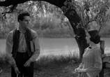 Сцена из фильма Молодой мистер Линкольн / Young Mr. Lincoln (1939) Молодой мистер Линкольн сцена 1