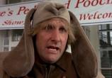 Сцена из фильма Тупой и еще тупее / Dumb & Dumber (1994) Тупой и еще тупее