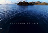 "ТВ Миссия ""Галапагос / Mission Galapagos (2017) - cцена 1"