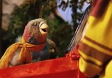 Сцена из фильма Плюк и его тягач / Pluk van de petteflet (2004) Плюк и его тягач сцена 1