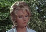 Фильм Гнездо шершней / Hornets' Nest (1970) - cцена 1