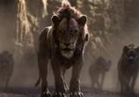 Мультфильм Король Лев / The Lion King (2019) - cцена 3