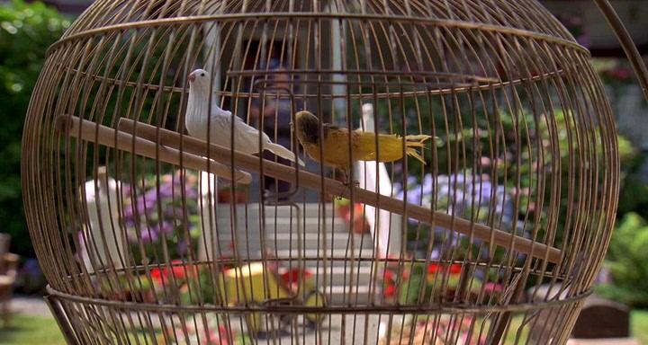 Счастливчик Гилмор (1996) смотреть онлайн или скачать ... адам сэндлер все фильмы