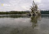Сцена из фильма National Geographic: С Точки Зрения Науки: Дело О Планете Земля / Naked Science (2004)