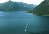 ТВ Discovery: Аляска: семья из леса / Alaskan Bush People (2014) - cцена 9
