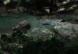 Фильм Лес призраков / The Forest (2016) - cцена 4