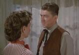 Сцена из фильма Закон и порядок / Law and Order (1953) Закон и порядок сцена 6
