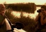 Сцена из фильма Рина / Ryna (2005) Рина сцена 9