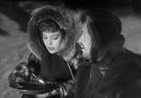 Сцена из фильма Зов предков / The Call of the Wild (1935) Зов предков сцена 2