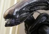 ТВ Мир фантастики: Чужой: Движущиеся картинки / Alien: Anthology (2011) - cцена 9