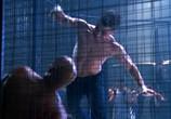 Сцена из фильма О.С. - Одинокие сердца / The O.C. (2004)