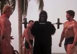 Сцена из фильма Весенние каникулы / Spring Break (1983) Весенние каникулы сцена 7