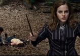 Фильм Гарри Поттер и Дары смерти: Часть 1 / Harry Potter and the Deathly Hallows: Part 1 (2010) - cцена 8