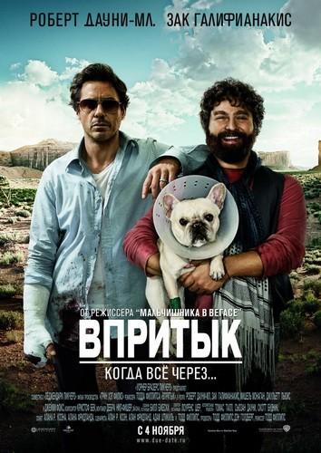 Скачать кино билет в вегас торрент онлайн билеты театры москвы