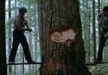 Сцена из фильма Путешествие Нэтти Ганн / The Journey of Natty Gann (1985) Путешествие Нэтти Ганн сцена 6