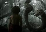 Сцена из фильма Книга джунглей / The Jungle Book (2016)