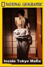 National Geographic: Взгляд изнутри: Токийская мафия