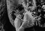 Сцена из фильма Пинки / Pinky (1949) Пинки сцена 12
