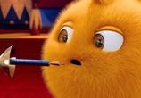 Сцена из фильма Солнечные зайчики / Sunny Bunnies (2015) Солнечные зайчики сцена 3