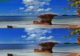 Сцена из фильма Последний риф 3D / The Last Reef 3D (2012) Последний риф 3D сцена 17