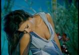 Музыка Ани Лорак - Звездная коллекция (2008) - cцена 2