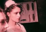 Сцена из фильма Запретная комната / The Forbidden Room (2015) Запретная комната сцена 18