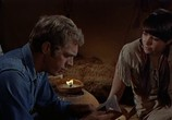 Сцена из фильма Невада Смит / Nevada Smith (1966) Невада Смит сцена 14