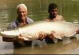 ТВ Discovery Channel: Animal Planet: Речные монстры / River monsters (2009) - cцена 6