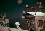 Мультфильм Как кошка с собакой... - Сборник мультфильмов (1972-1984) (1972) - cцена 5