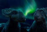Фильм Прогулки с динозаврами 3D / Walking with Dinosaurs 3D (2013) - cцена 5