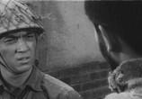 Фильм Отряд вольных головорезов идет на запад / Dokuritsu gurentai nishi-e (1960) - cцена 2