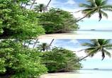 Сцена из фильма Кораллы 3Д: Магия Индо-Тихоокеании в 3Д / Corals 3D: Magic of the Indo-Pacific 3D (2012) Кораллы 3Д: Магия Индо-Тихоокеании в 3Д сцена 1