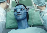 Фильм Аватар / Avatar (2009) - cцена 6