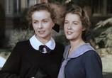 Сцена из фильма Оптом дешевле / Cheaper by the Dozen (1950) Оптом дешевле сцена 3