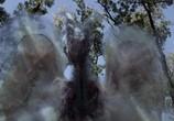 Сцена из фильма Сердце дракона 3: Проклятье чародея / Dragonheart 3: The sorcerer's curse (2015) Сердце дракона 3: Проклятье чародея сцена 5
