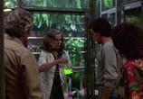 Фильм Болотная тварь / Swamp Thing (1982) - cцена 1