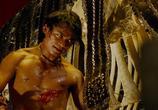 Сцена из фильма Честь дракона / Tom yum goong (2005)