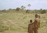 Фильм Самба Траоре / Samba Traoré (1992) - cцена 2