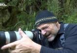 Сцена из фильма Гризли Аляски бросают вызов / Alaska's Grizzly Gauntlet (2018) Гризли Аляски бросают вызов сцена 5