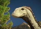 ТВ Сказание о динозаврах / Dinotasia (2012) - cцена 5